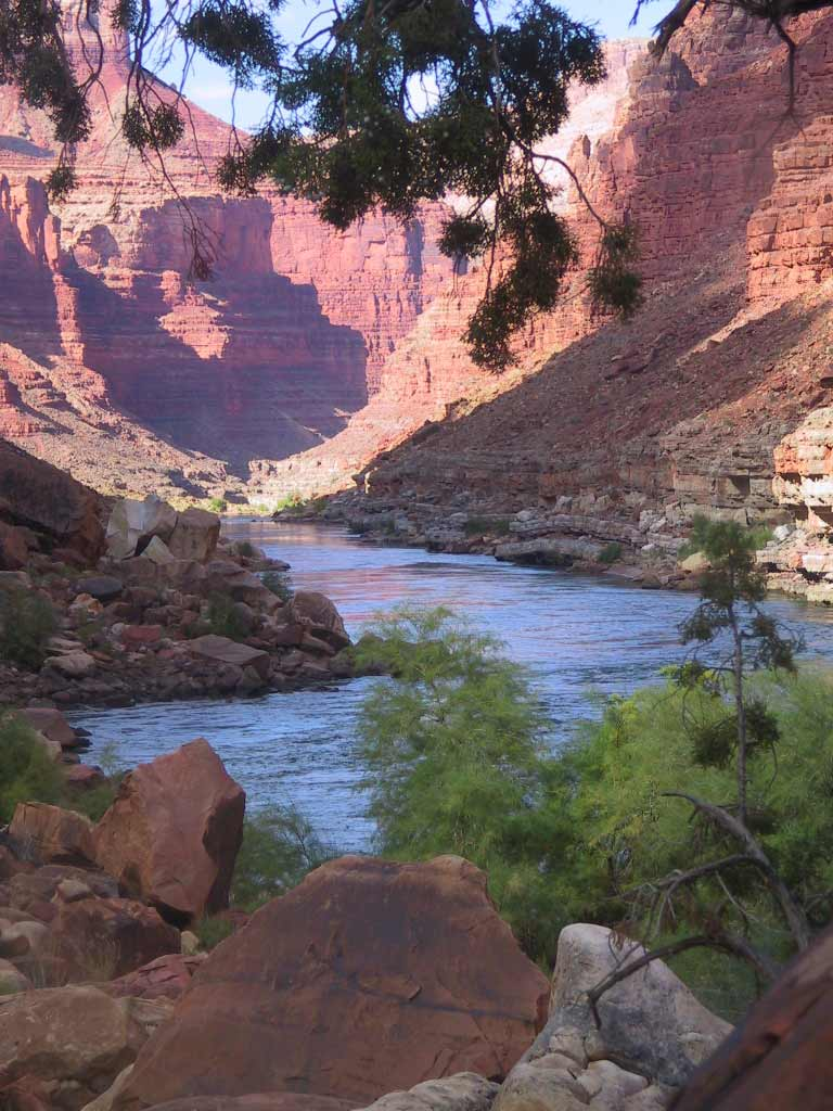 the scenic grand canyon